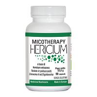 MICOTHERAPY HERICIUM 90CPS